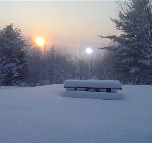 winter sun 2.jpg