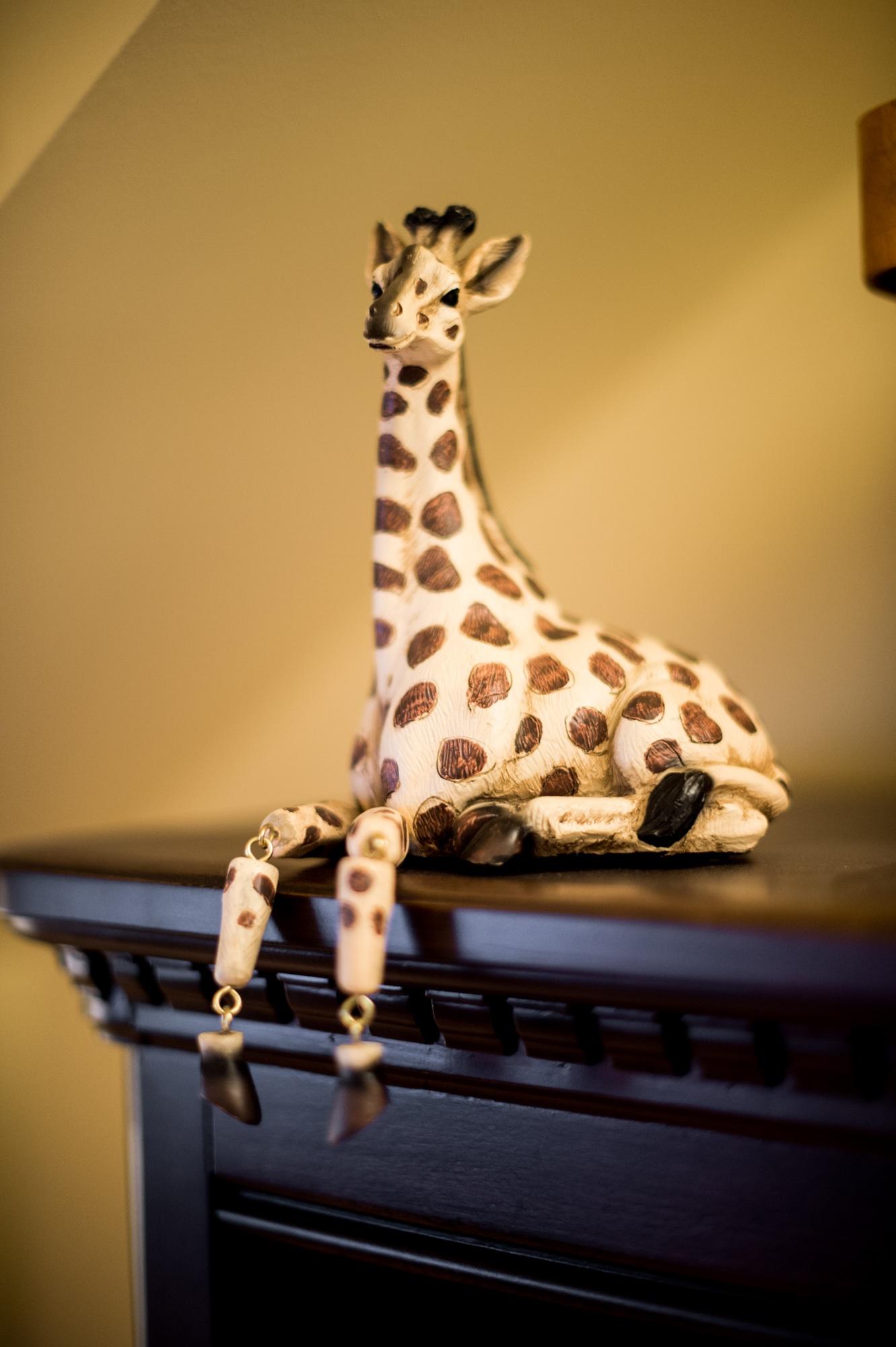 giraffeDh.jpg