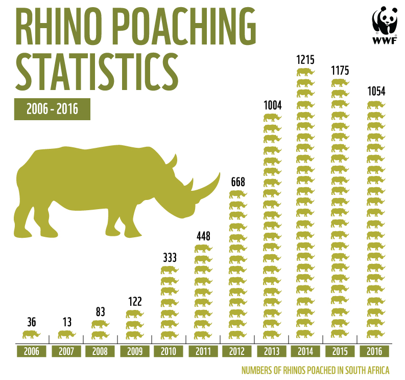 RhinoGraph-2016Stats-2 (1).jpg