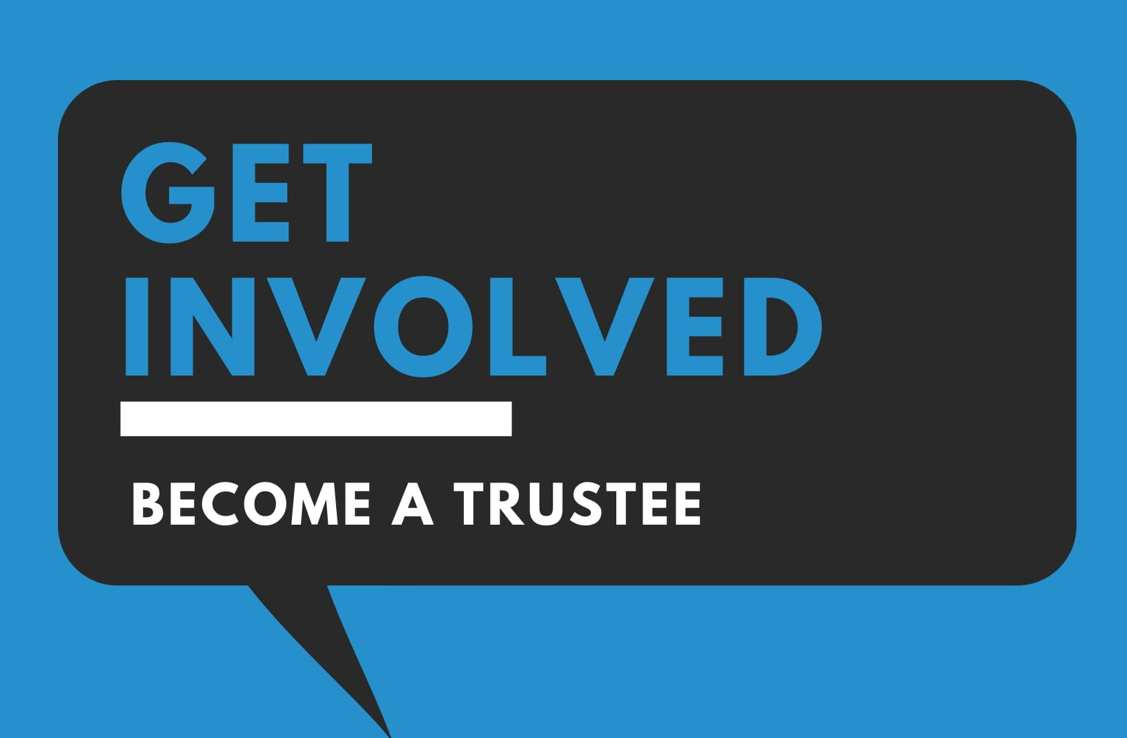 2019 trustee recruitment form-crop.jpg