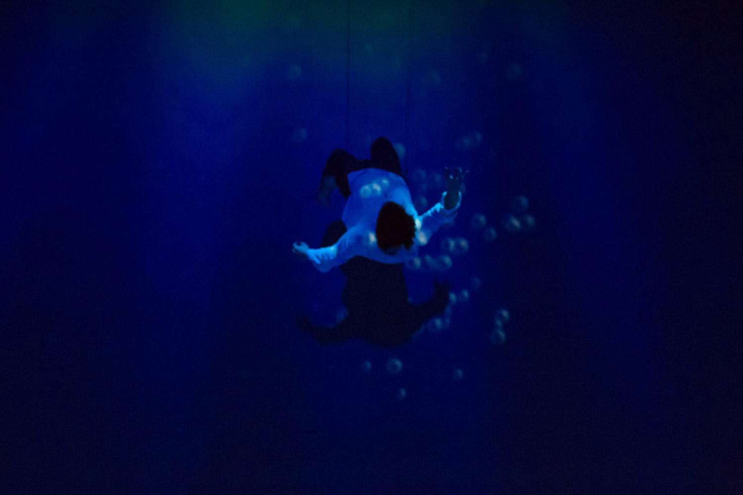 The Little Mermaid - Eric Drowning