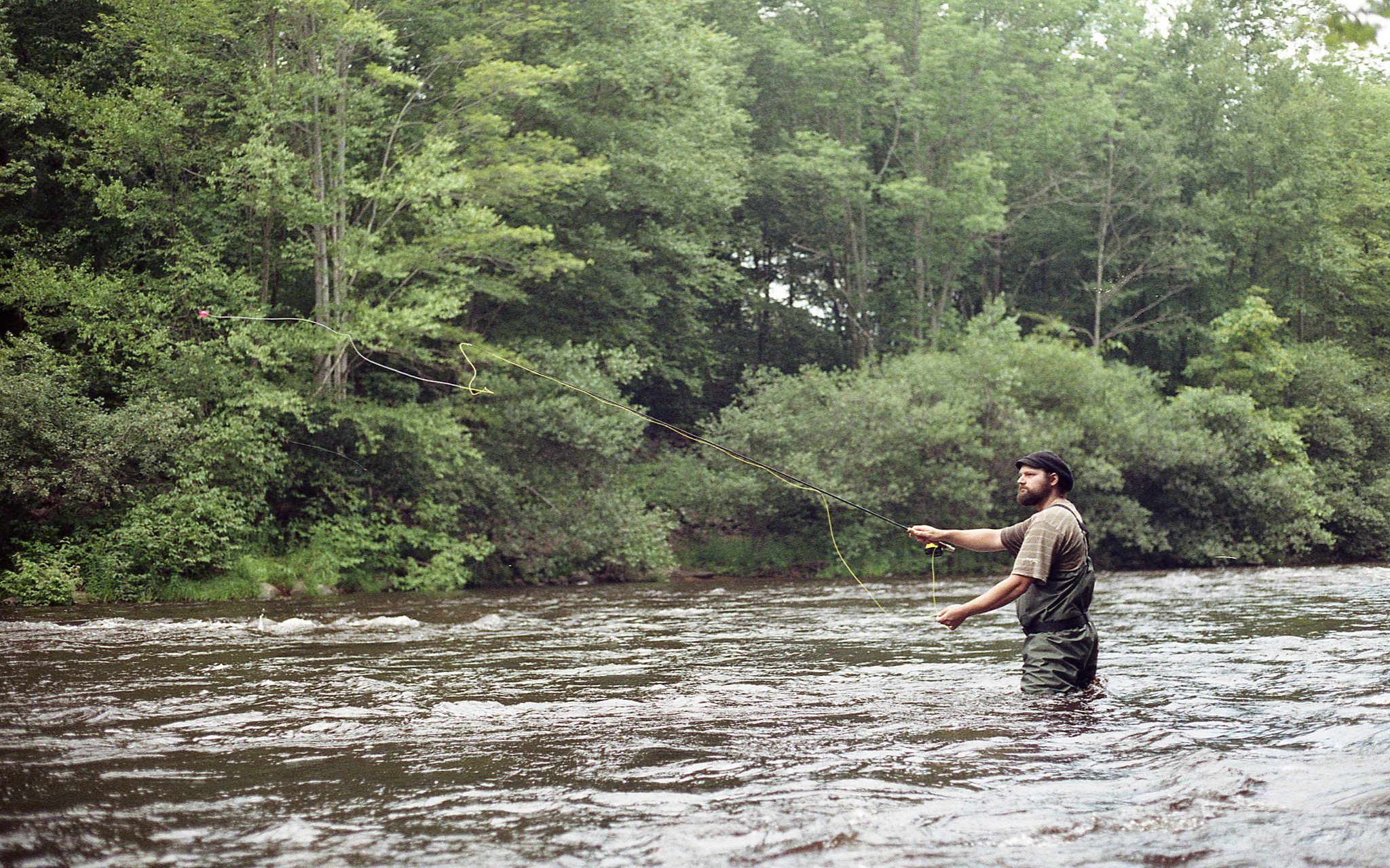 fly fishing_CC flickr_Patrick Gensel.jpg