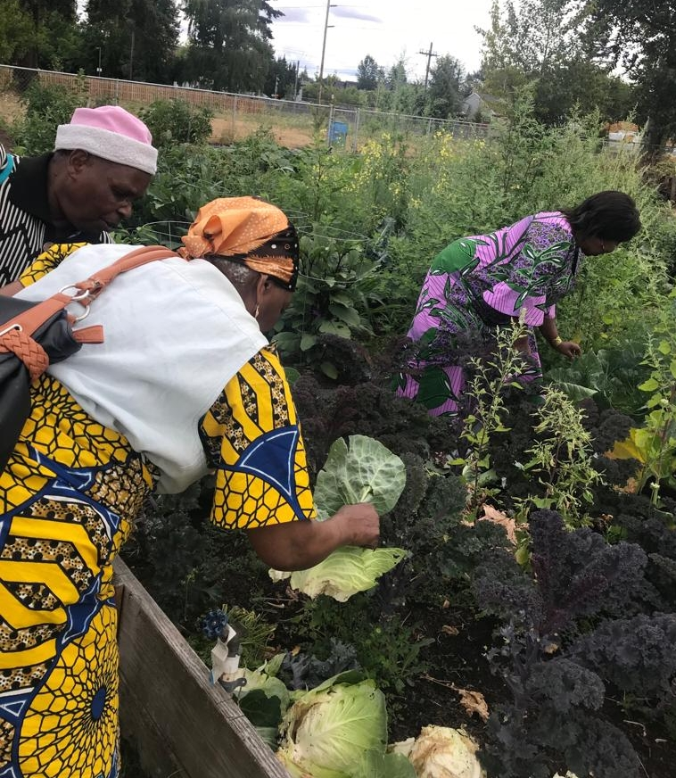 AFHHO - Swahili Women's Group Community Gardens and Education Project from Portland Oregon