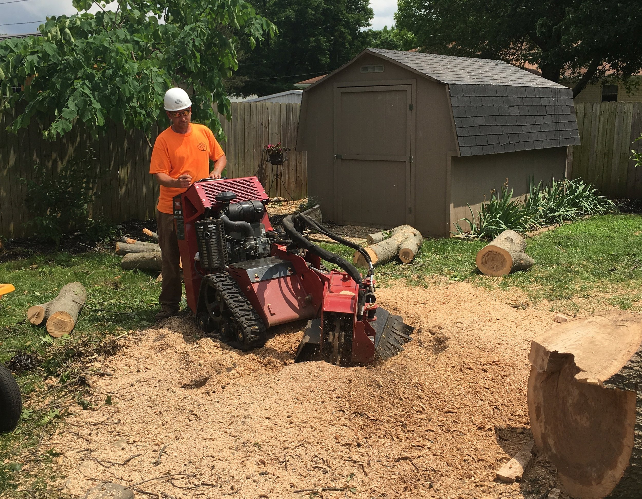 "Stump Grinding - When people talk about stump removal, they most often mean ""stump grinding"" as actual removal would leave an ugly hole in the ground. Typically, we grind the stump and roots down to 3-6 inches below the ground."
