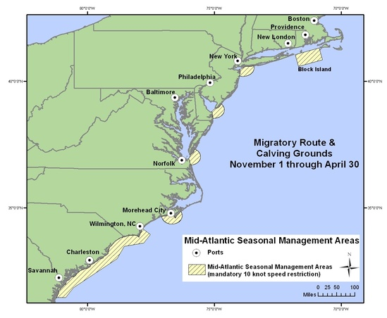 NOAA Fishers has adopted a seasonal speed restriction in certain areas during the winter, but this policy needs to be reviewed for year-round marine mammal activity at a wider area. As of now, all vessels 65 feet (19.8 meters) or longer must travel at  10 knots or less  in certain locations (Seasonal Management Areas) along the U.S. east coast at certain times of the year to reduce the threat of ship collisions with endangered North Atlantic right whales. The purpose of this regulation is to reduce the likelihood of deaths and serious injuries to these endangered whales that result from collisions with ships.