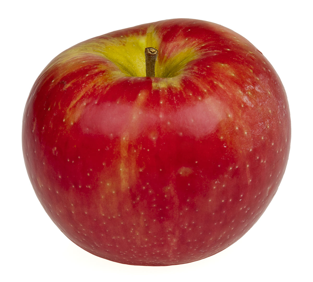 1200px-Honeycrisp-Apple.jpg