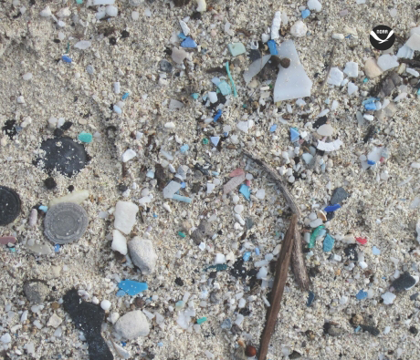 Microplastics on the beach. Image credit: NOAA.