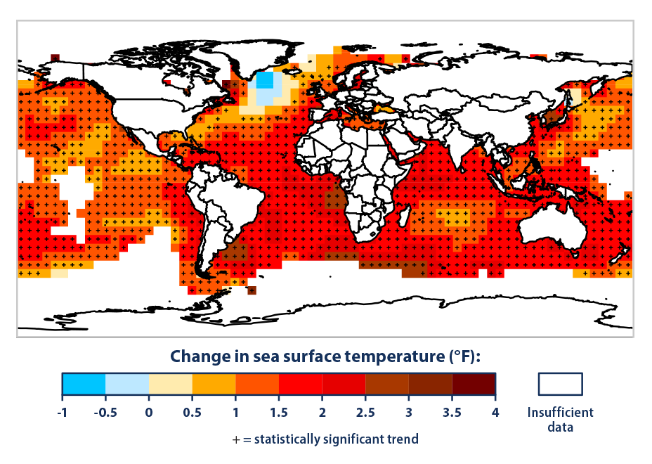 "This map shows how average sea surface temperature  around the world changed between 1901 and 2015. It is based on a combination of direct measurements and satellite measurements. A black ""+"" symbol in the middle of a square on the map means the trend shown is statistically significant. White areas did not have enough data to calculate reliable long-term trends.  Data source: IPCC, 2013 7 ; NOAA, 2016 8   Web update: August 2016"