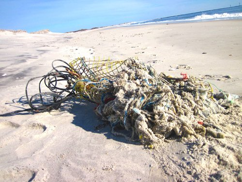 GHOST FISHING GEAR FOUND WASHED ASHORE AT BARNEGAT LIGHT, NJ IN 2019.