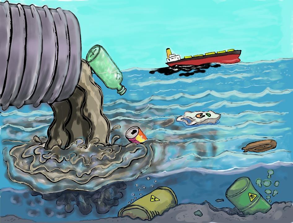 Pollution Kills Coastal Wildlife -