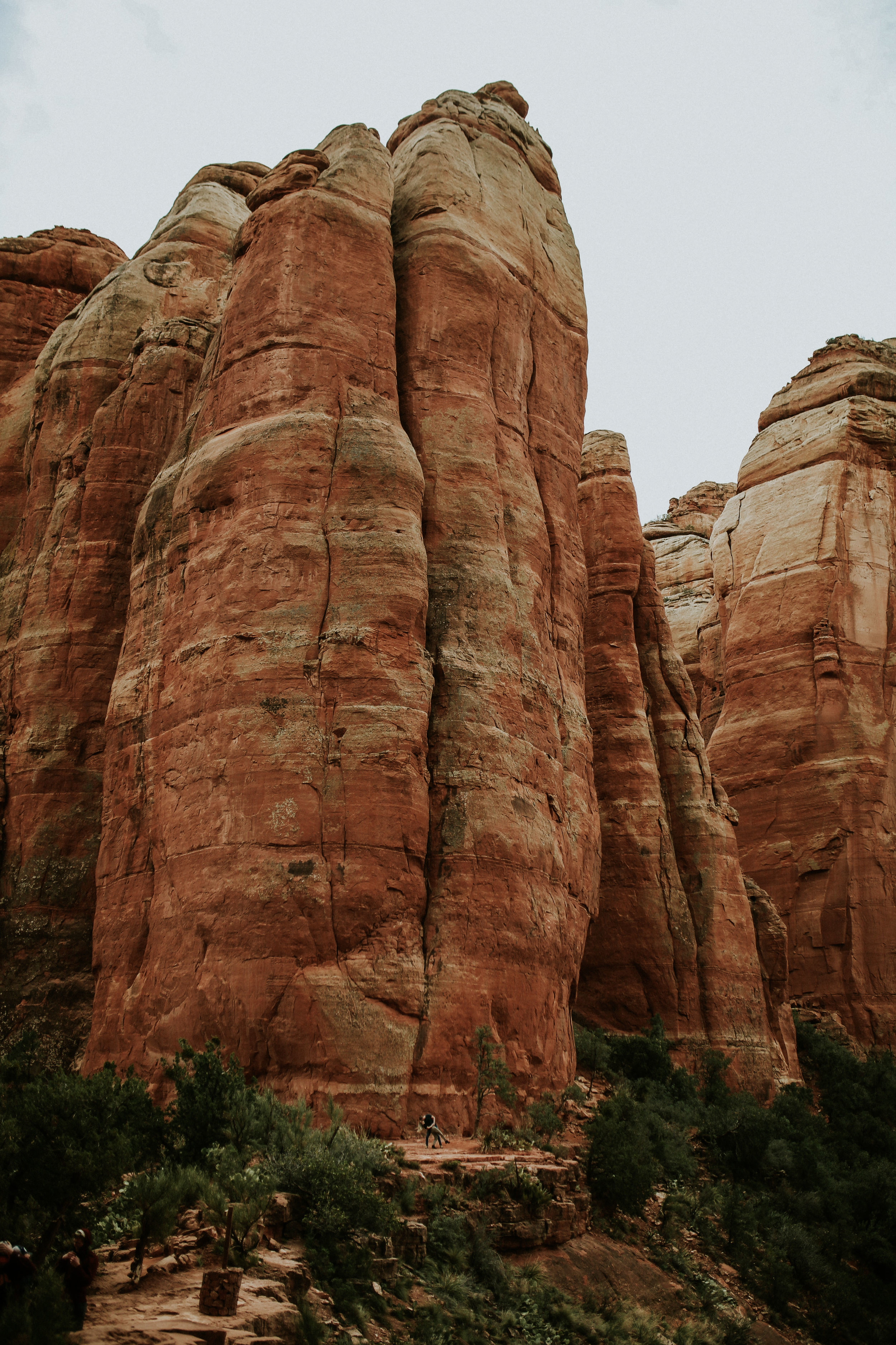 Cathedral Rock Photographer