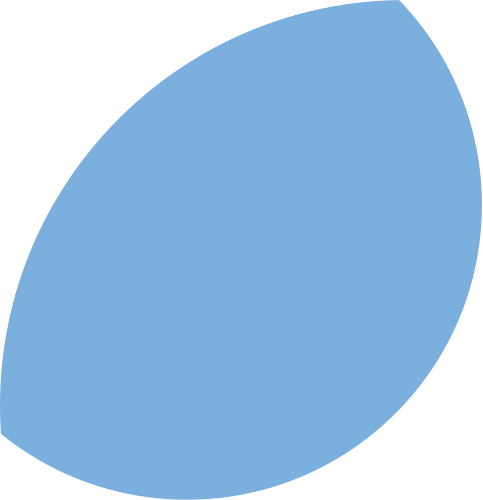 blue oval2.png