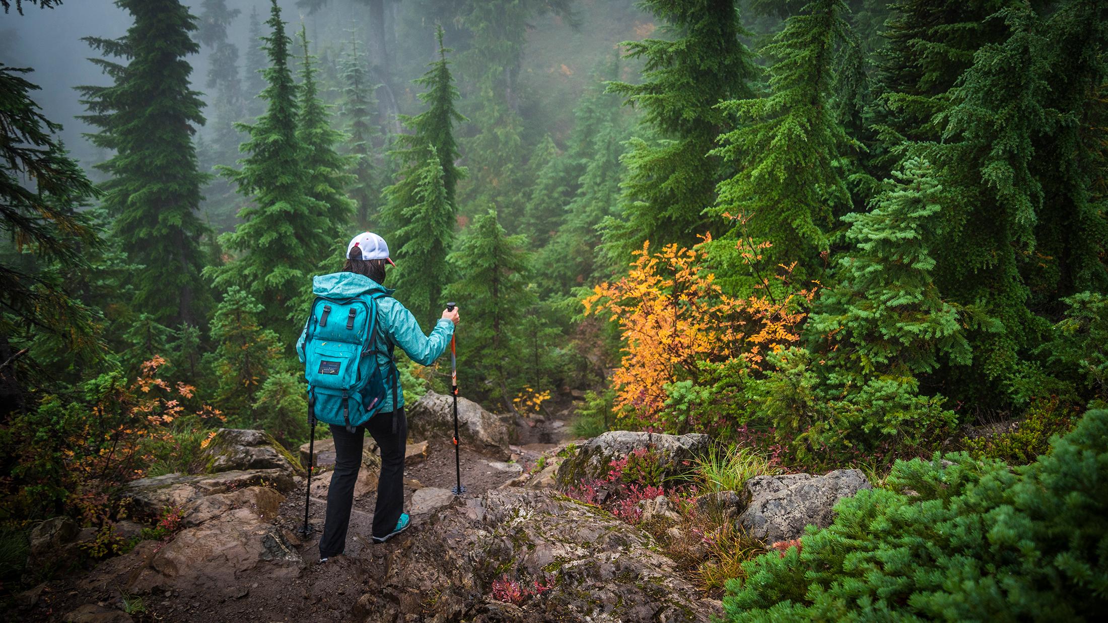 Mt. Elinor hike….