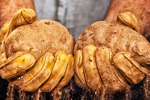 Potatoes Grown in the Colombia River Basin -