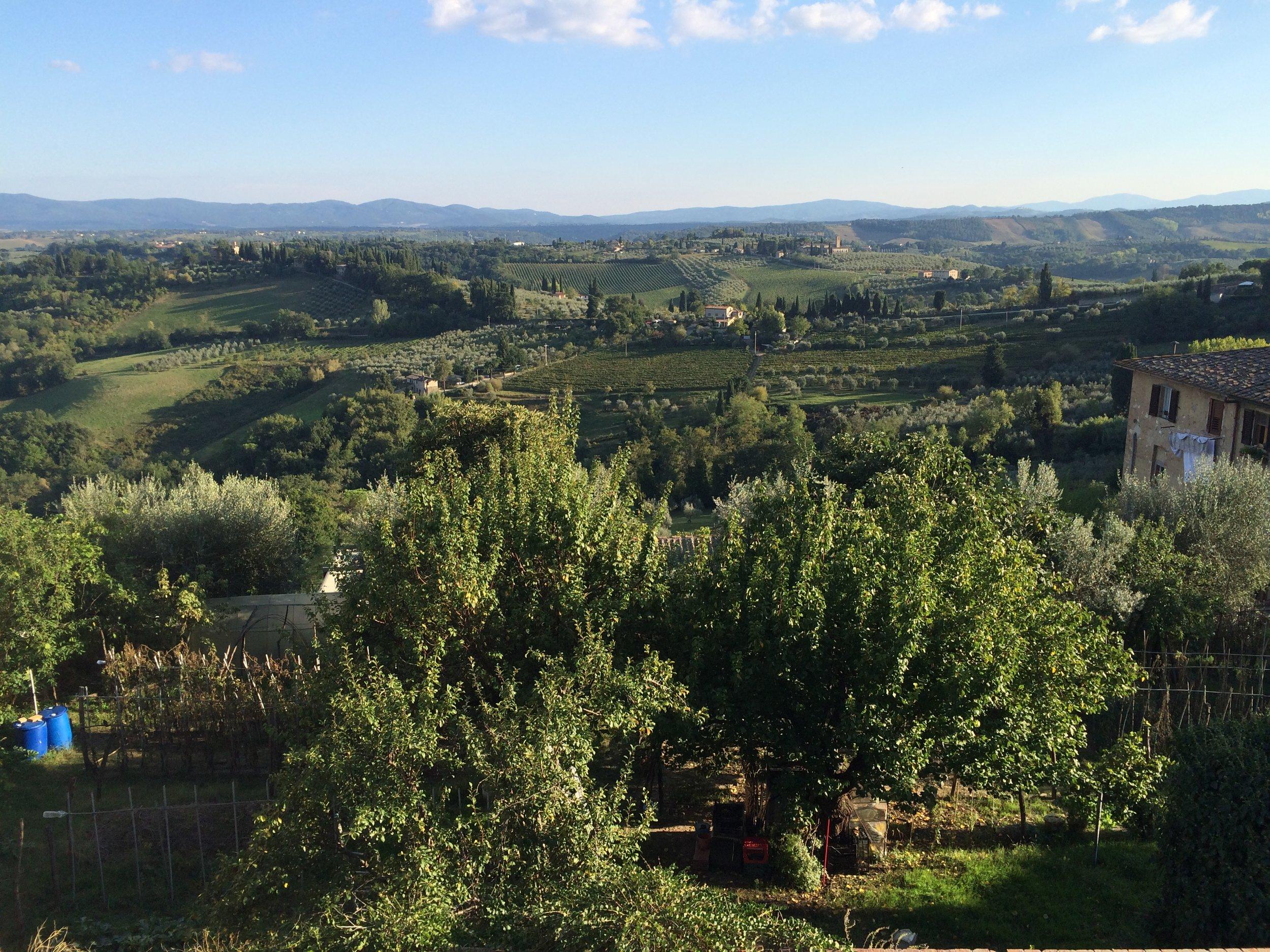 Tuscany IMG_1913.JPG