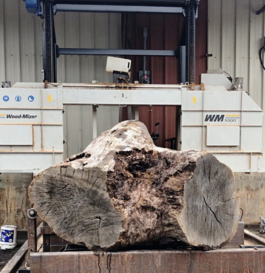 The log is carefully inspected for metals or other debris that may affect the milling process.