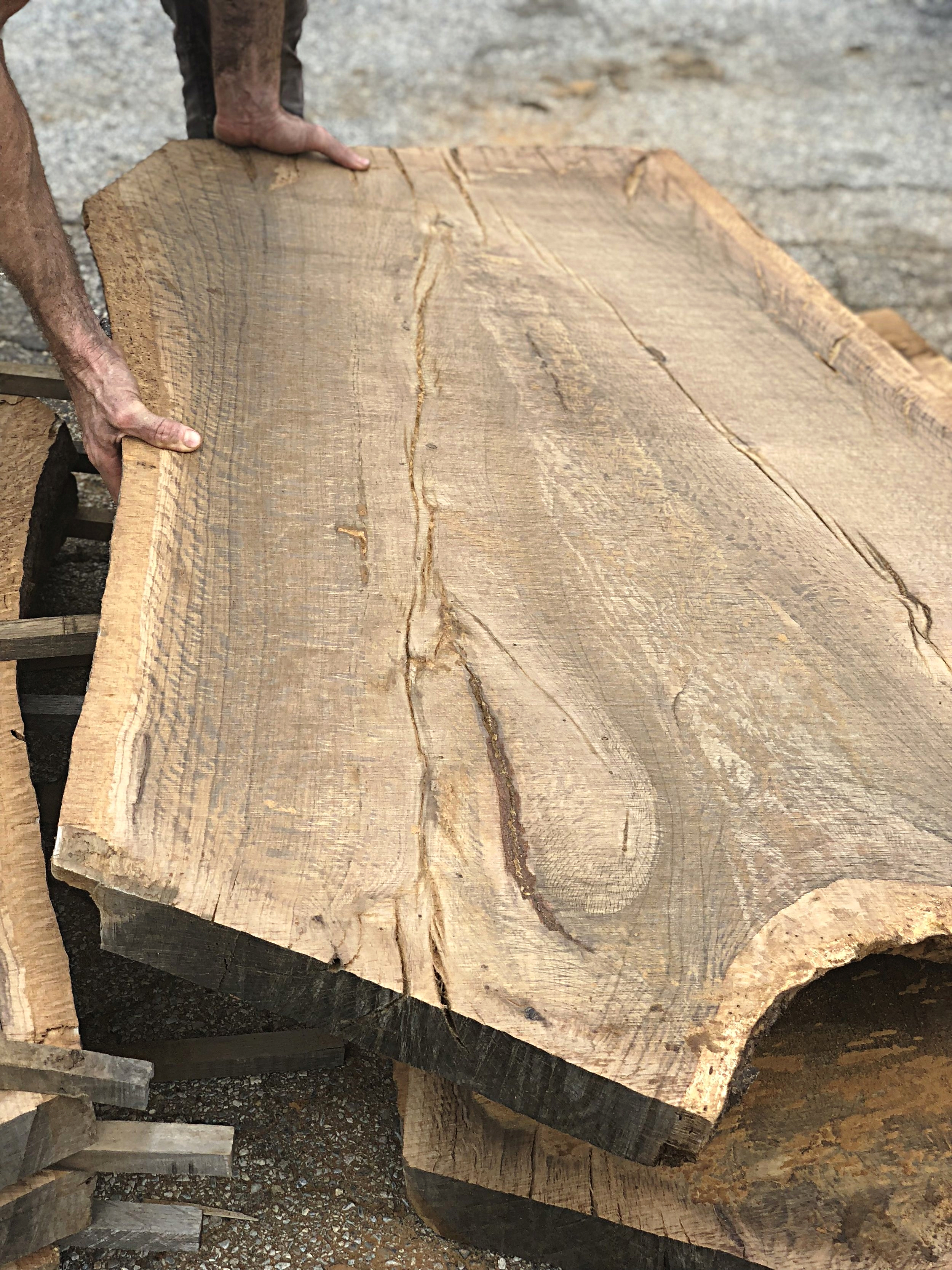 Fort Gates Eutree Root to Fruit Oak Tree to Slab Tables