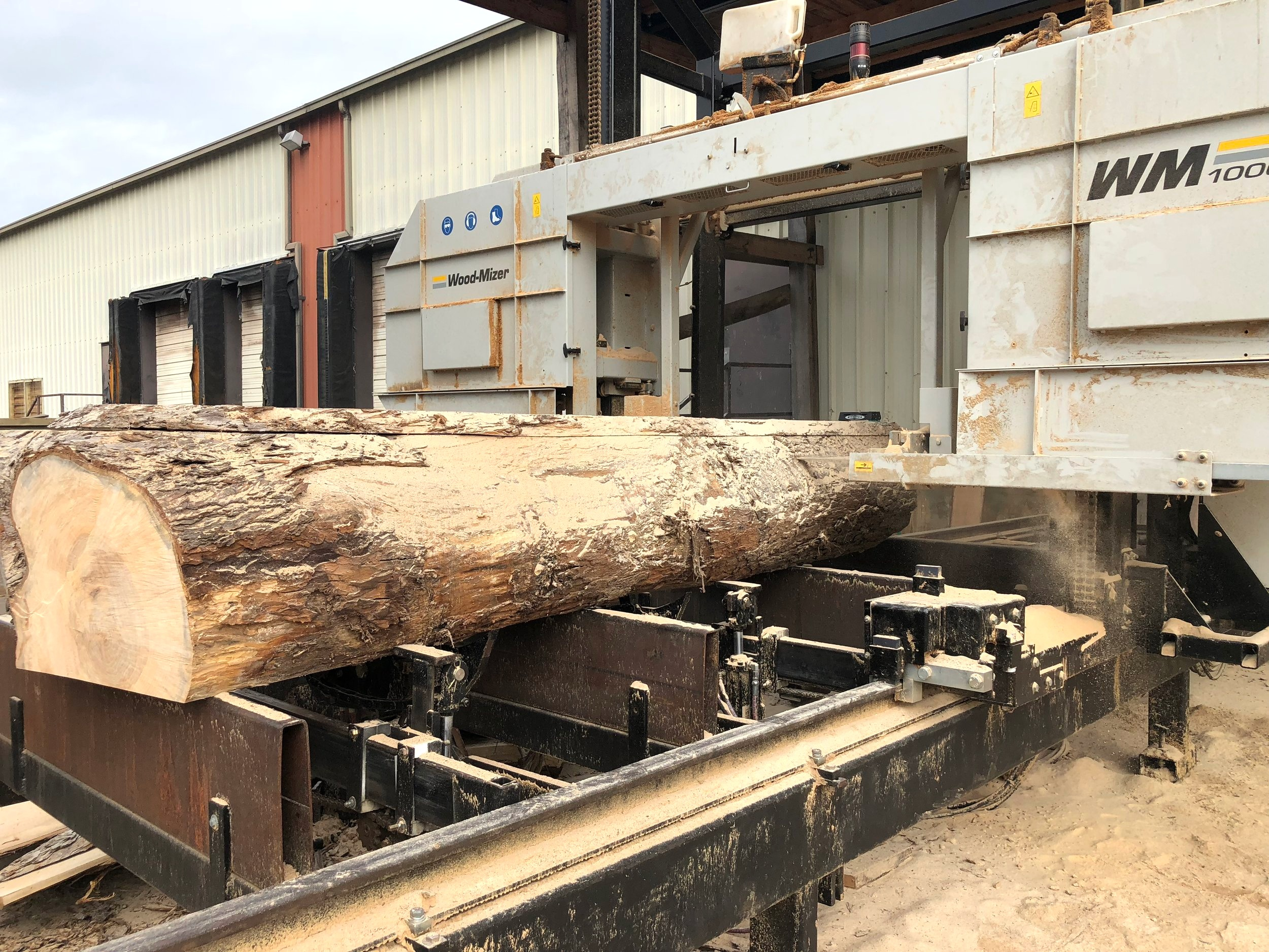 "Logs are sawed into slabs on the Wood-Mizer 1000 mill. Fun fact: Eutree has one of the largest capacity sawmills in the Southeast sawing logs up to 68"" diameter."