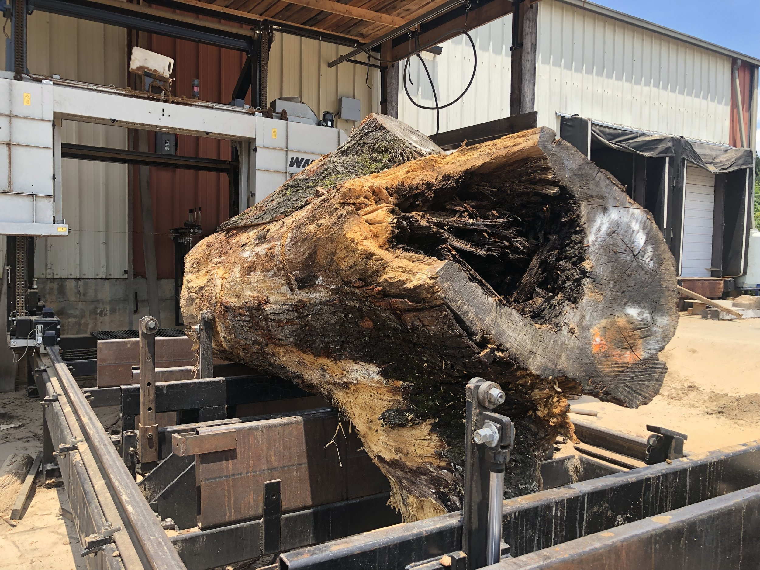 Custom hydraulics on the mill's carriage allows Eutree sawyers to seamlessly rotate the log for the best cut.