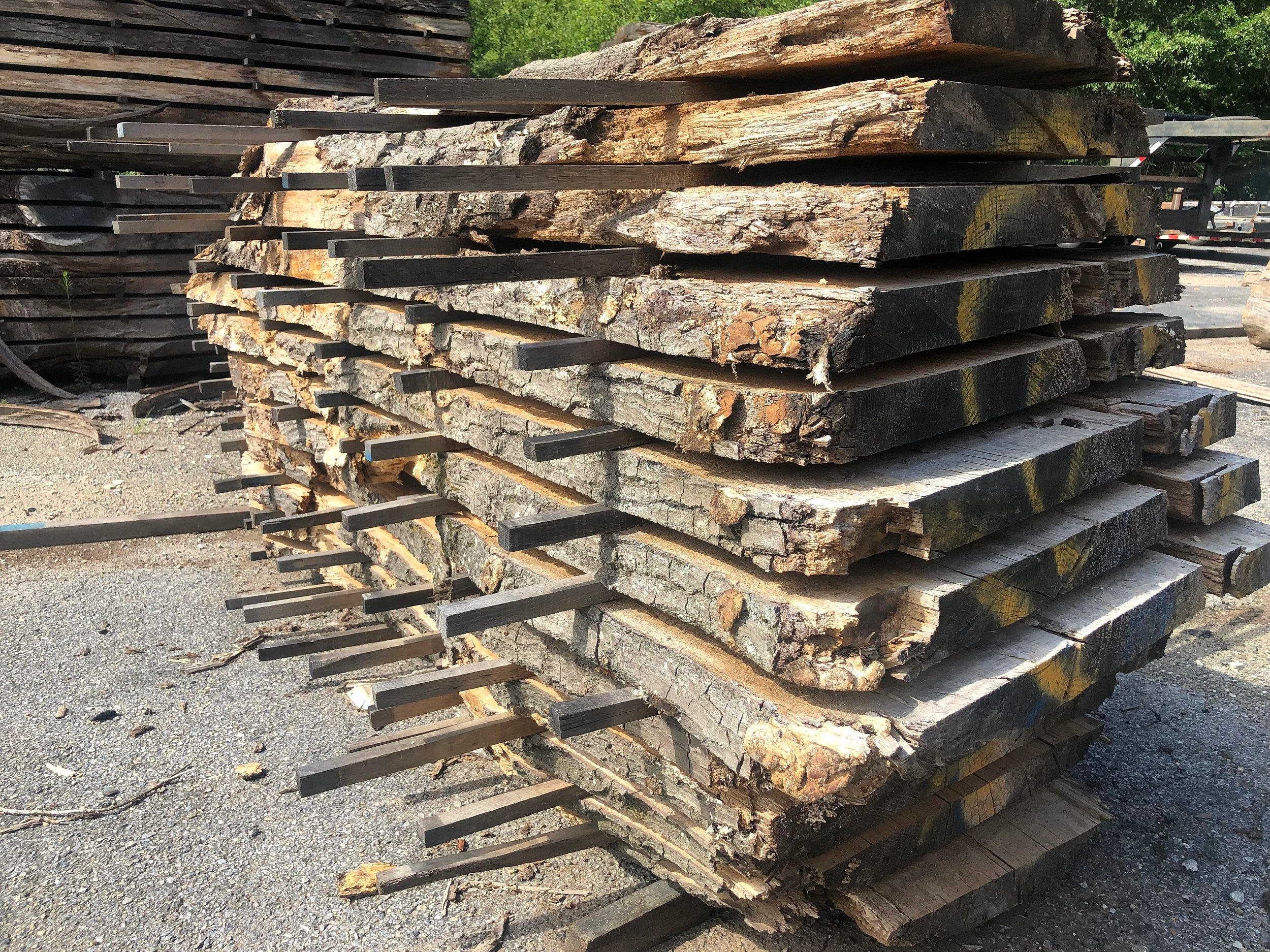 The flitches of wood from the each will spend several months air drying in Eutree' lumberyard.