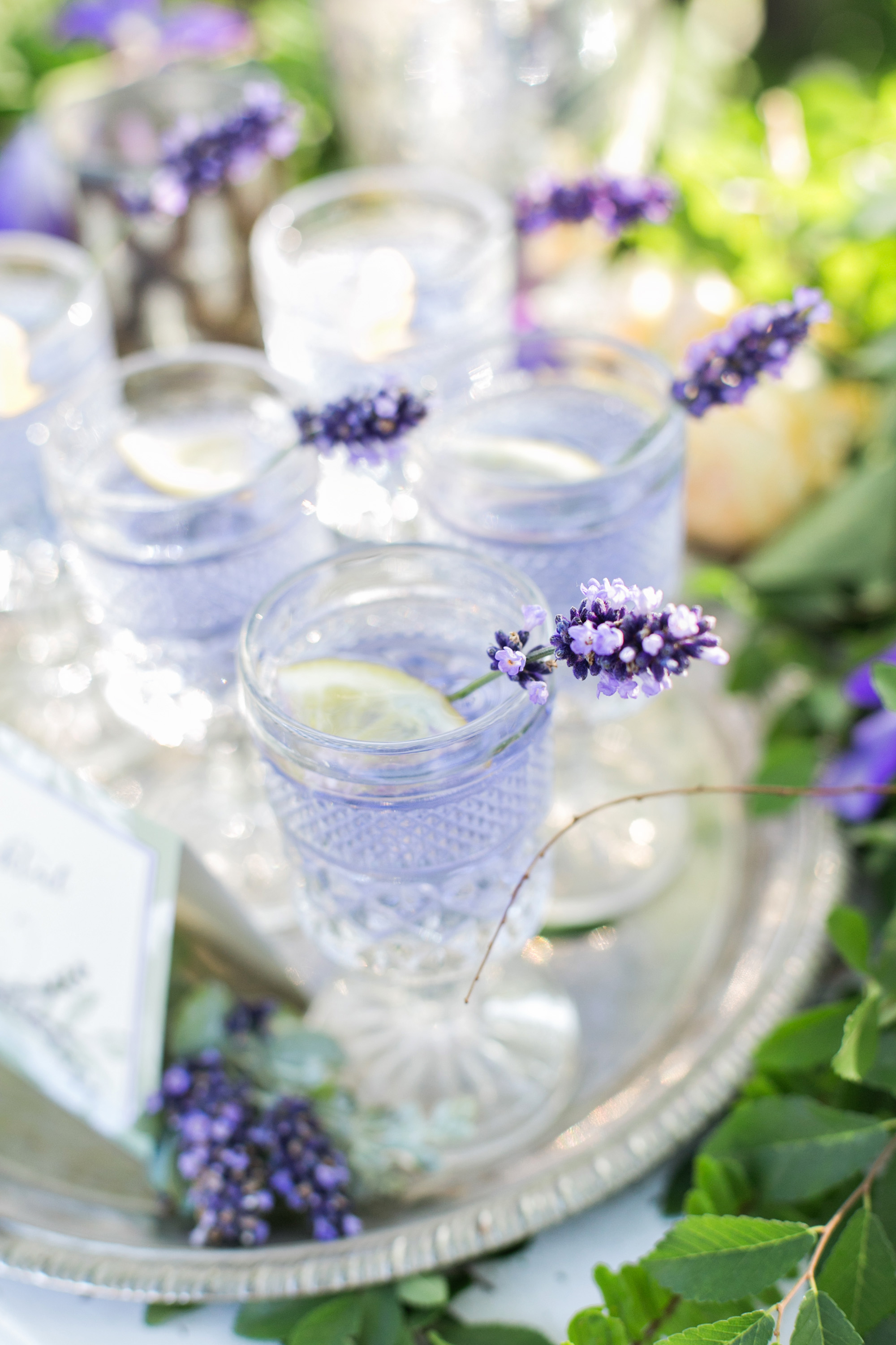 homestead-wilshire-ranch-lavender-gin-wedding-cocktail-carrie-vines-008.jpg