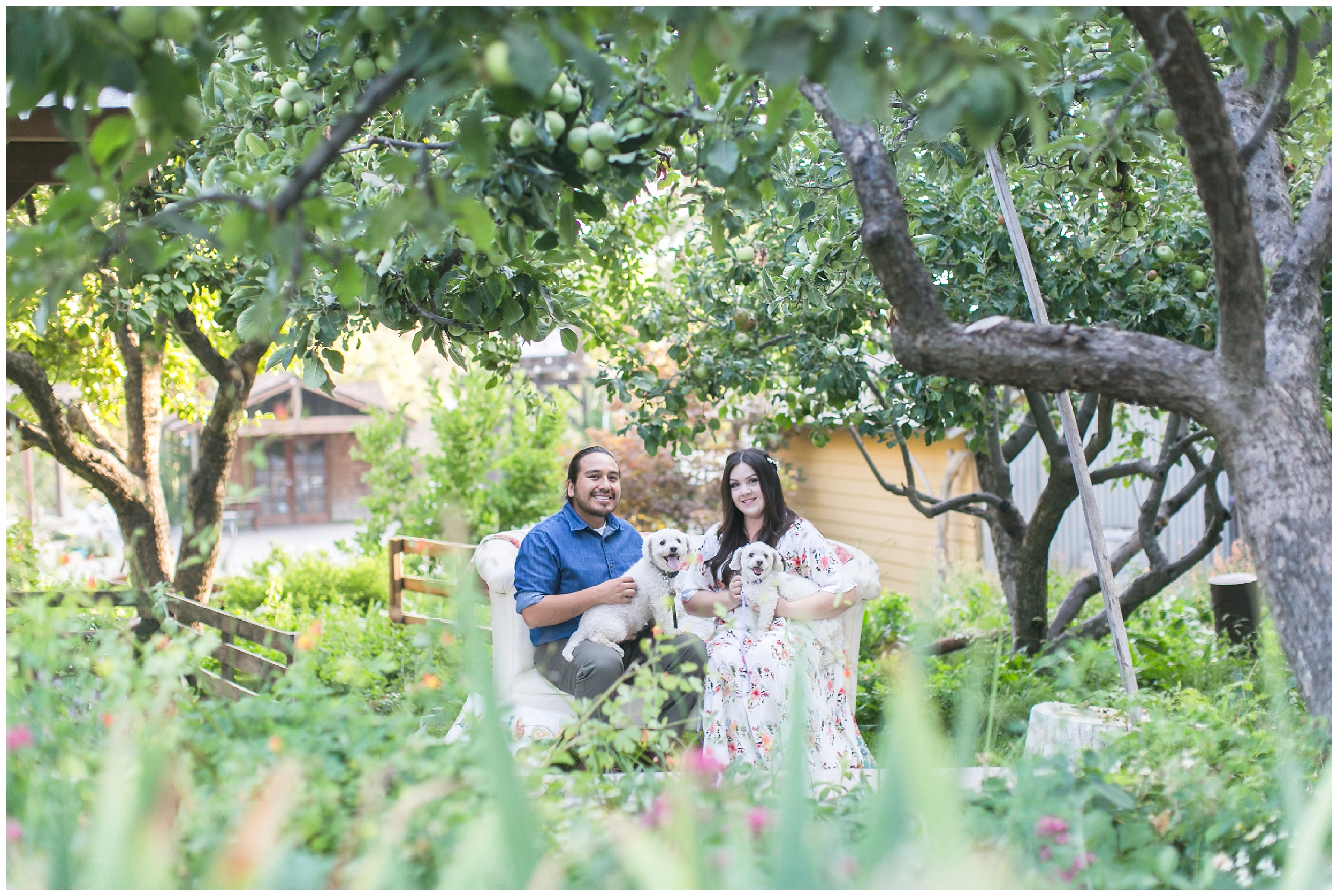 engaged-couple-sitting-on-couch-with-dogs-under-apple-trees-homestead-oak-glen-carrie-vines-001.jpg