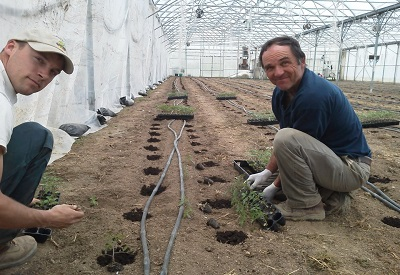 mike & Will planting Greenhouse.jpg
