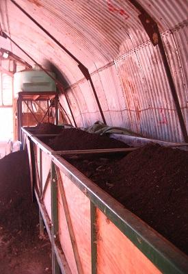 `worm compost 013.jpg
