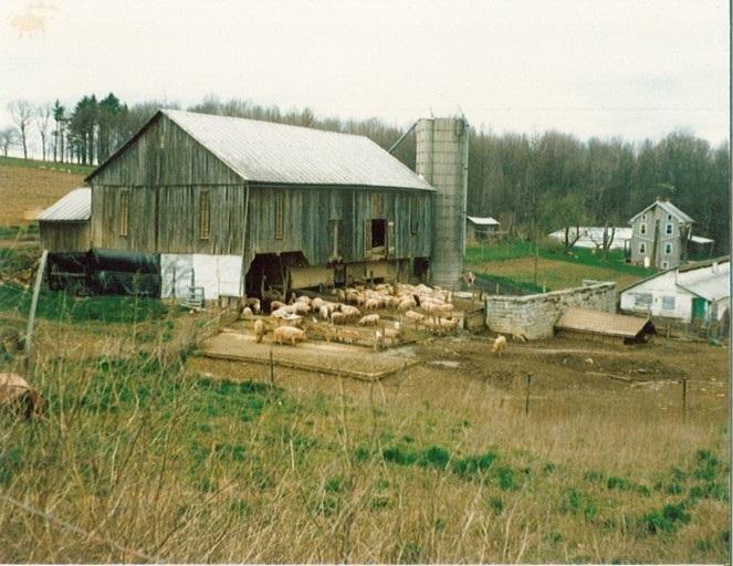 orginal barn and packhouse.jpg