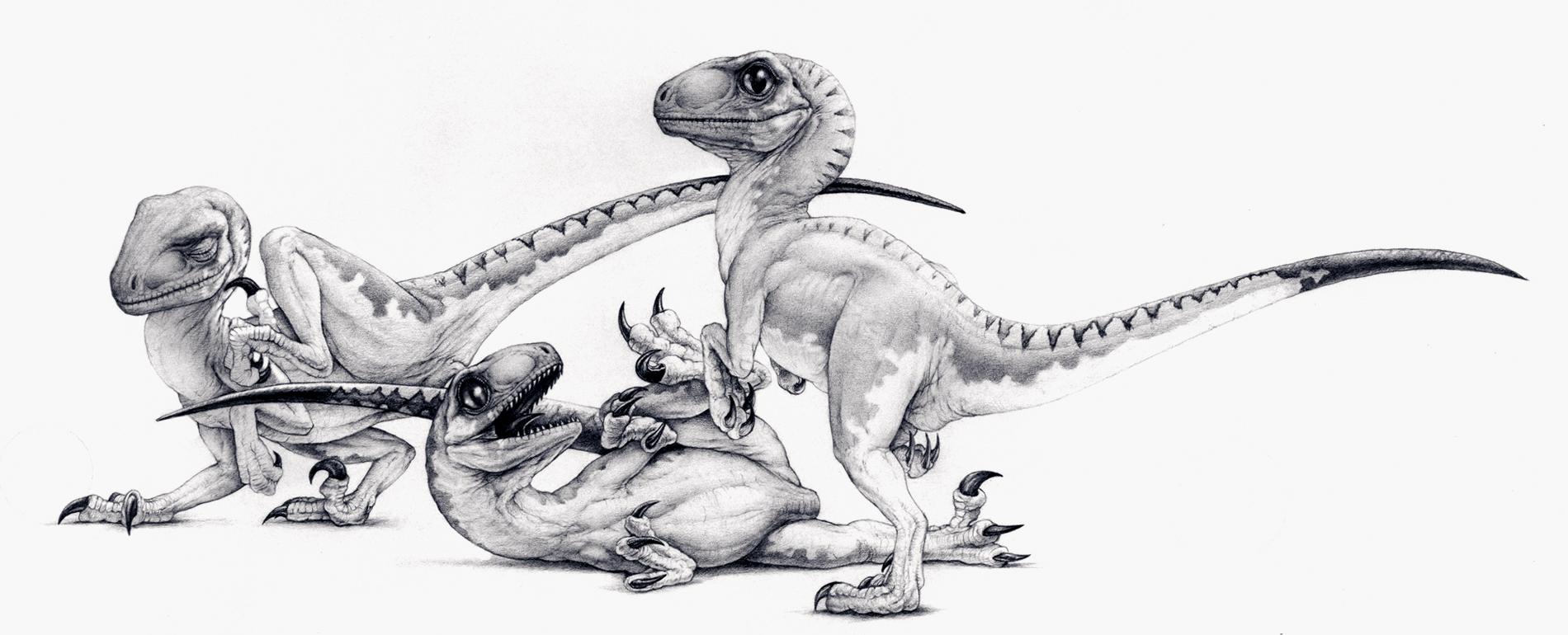 Baby Raptors.jpg