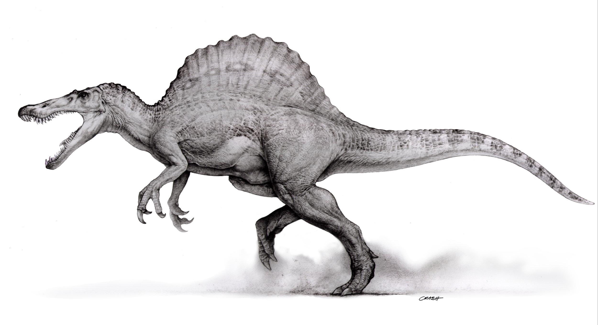 Spinosaur.jpg