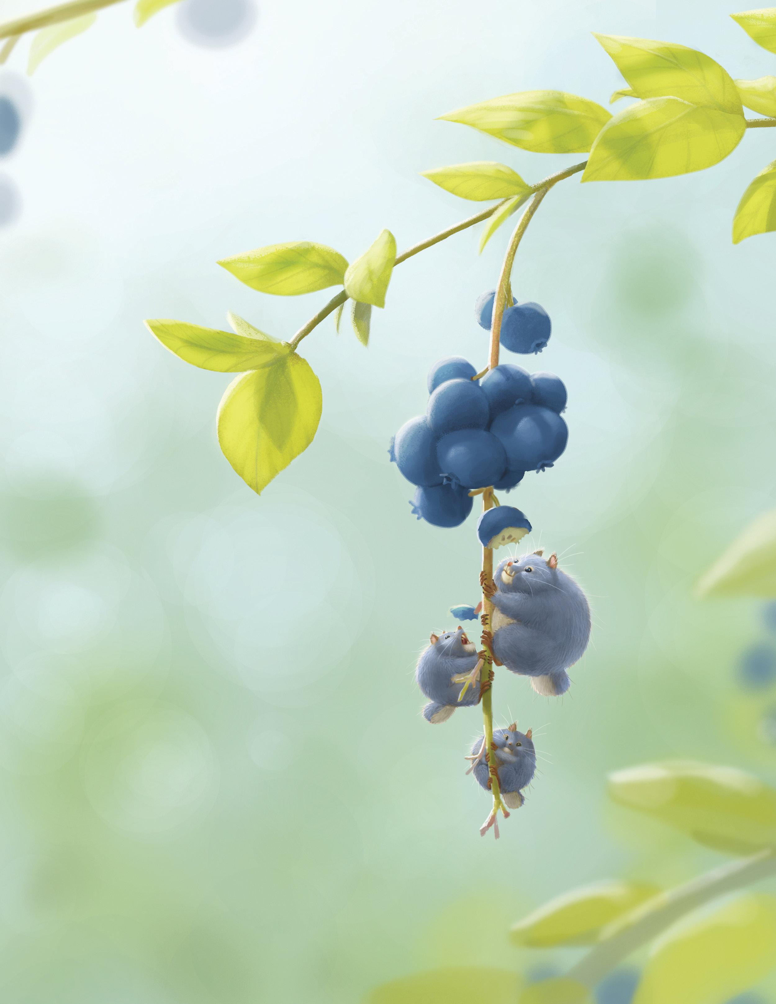 blueberry dinner-BKF.jpg