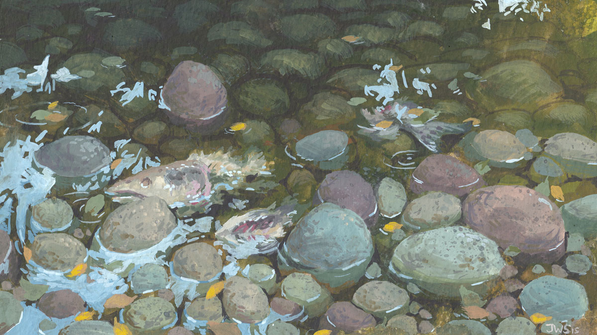PleinAir_MosquitoCreek_web.jpg