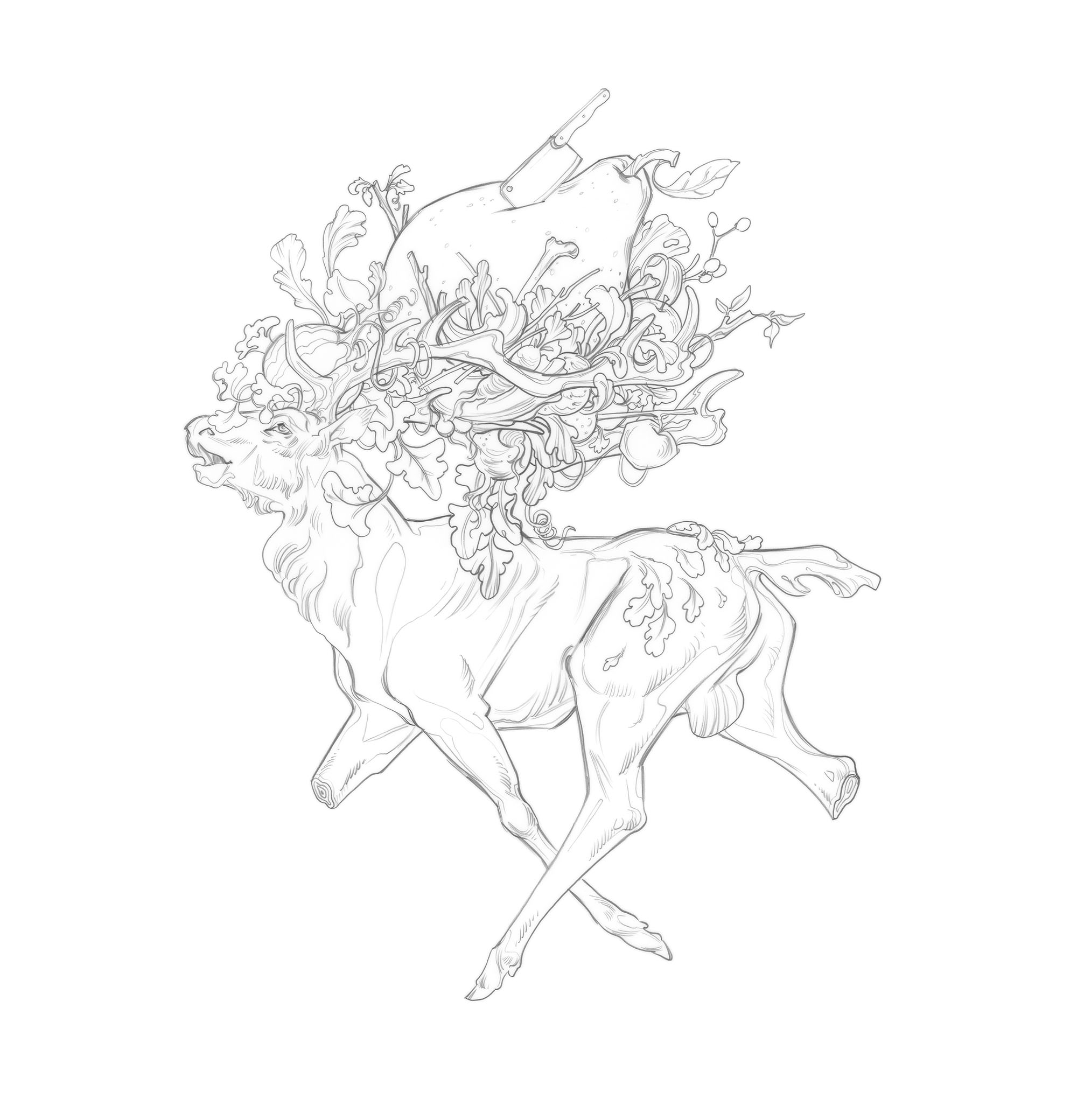 woodenstag_frontcover_whitedrawing_JAWCooper copy.jpg