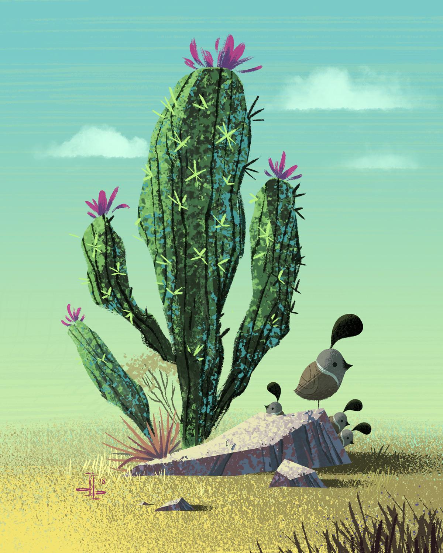 11db_Cactus_Quails.jpg