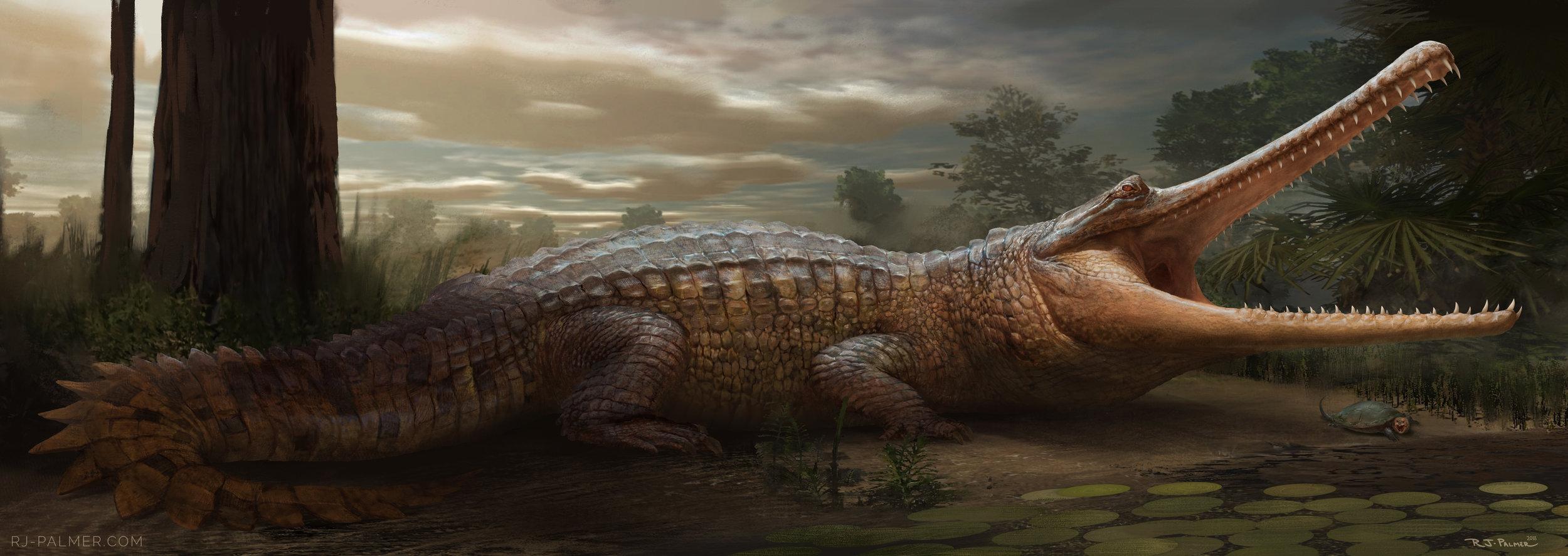 rjpalmer_thoracosaurus_005.jpg