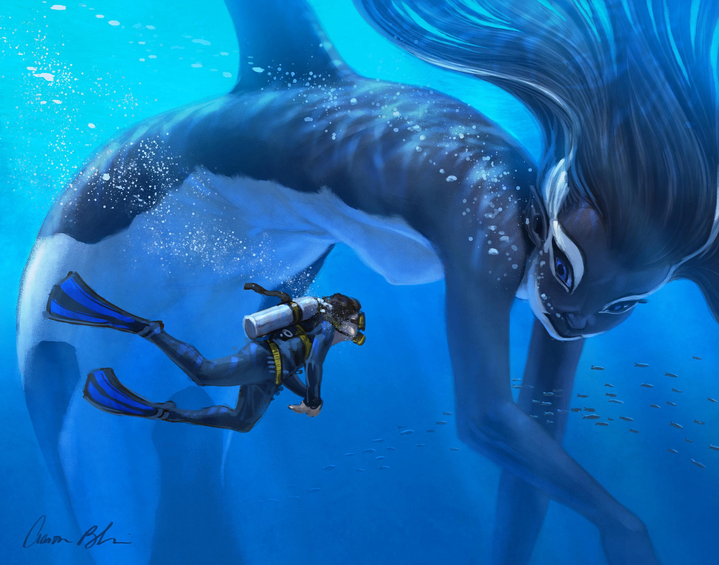 Merwhale 11x14.jpg