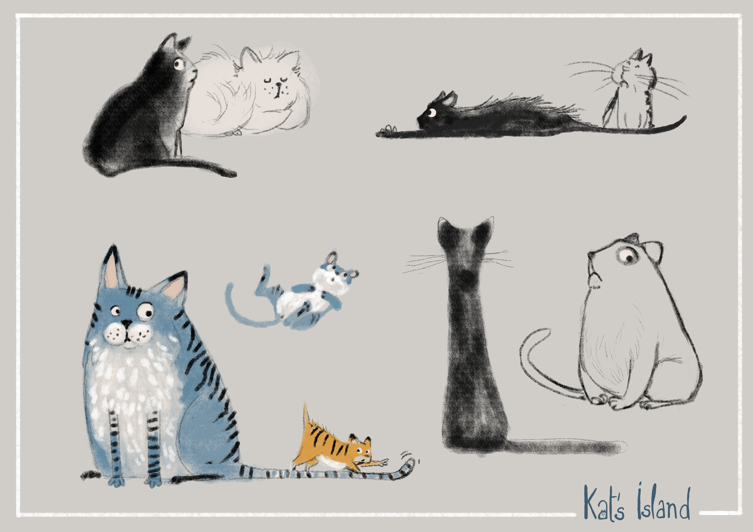 Kat01.jpg