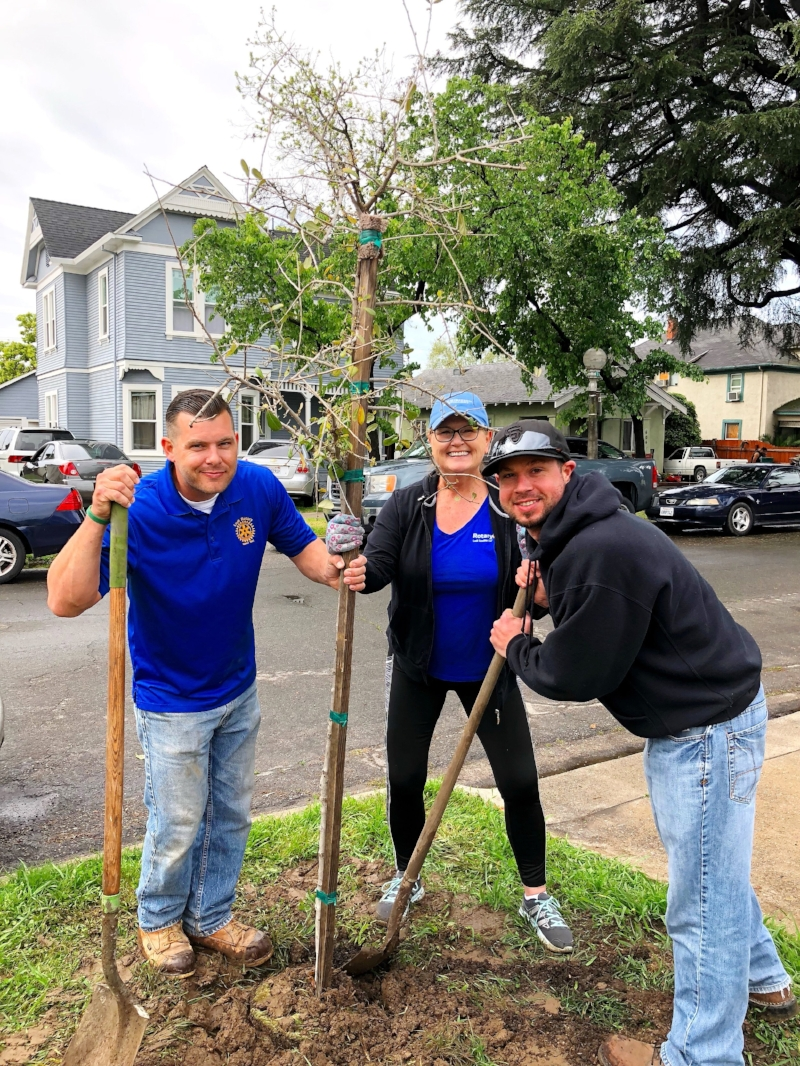 Rotary volunteers planting a tree during the Arbor Day celebration