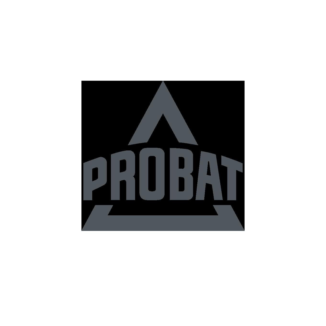 PROBAT_Signet_Vollton.png