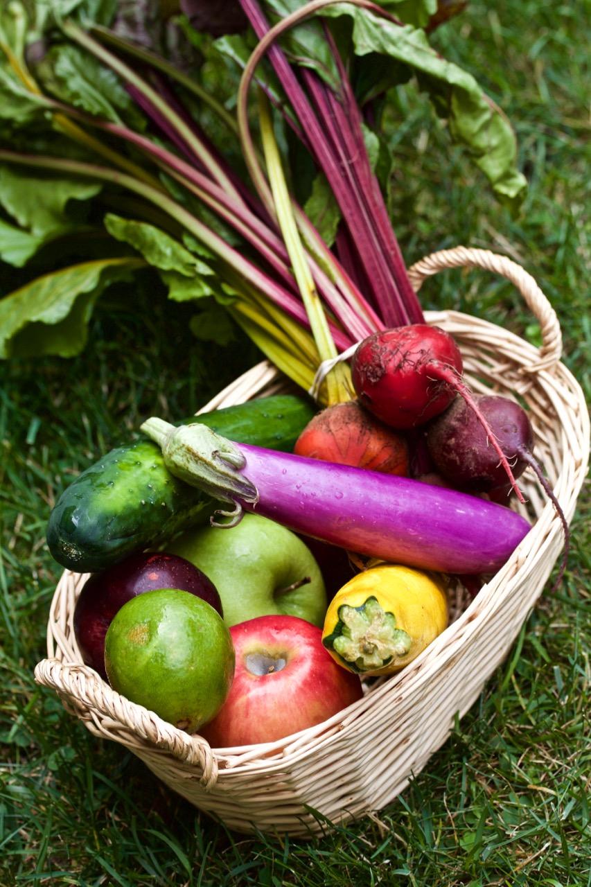 FARM DONATED   PRODUCE AT FOOD PANTRY