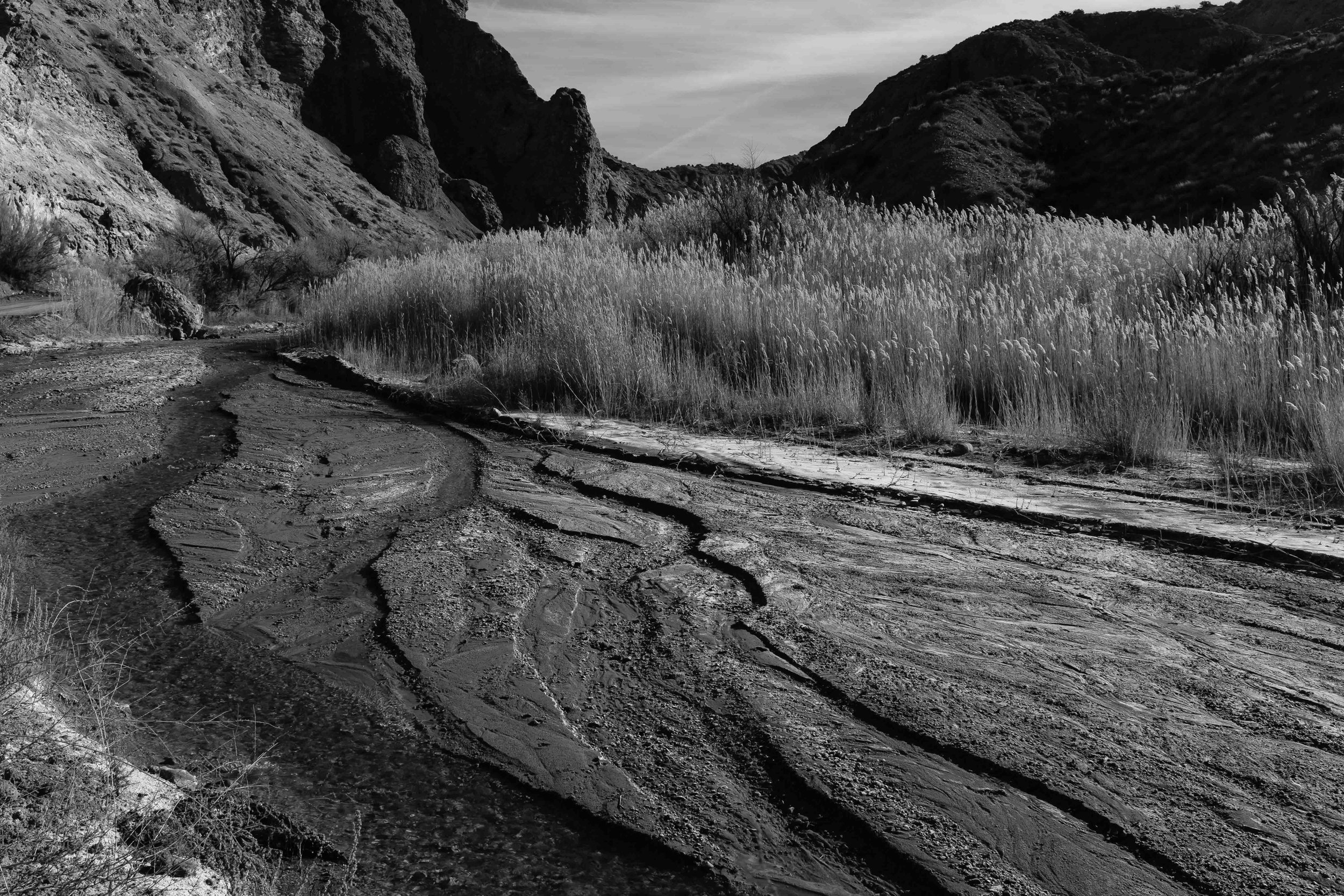 The textures of the creek make for interesting black and white images. Fuji X100F