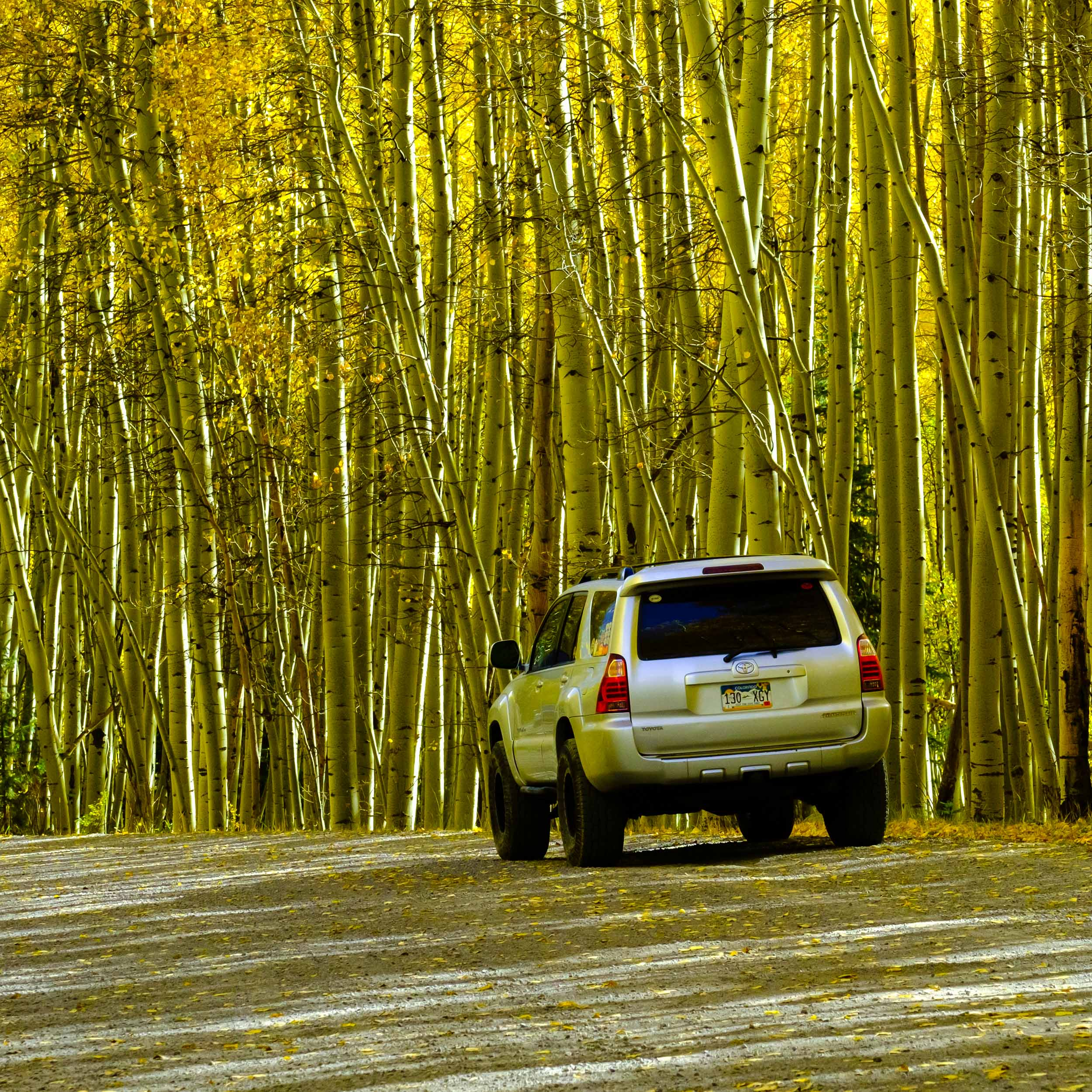 Shadows of Aspens hover over the Toyota 4Runner - Fuji XT2, XF 50-140mm f/2.8 @ 77.3mm