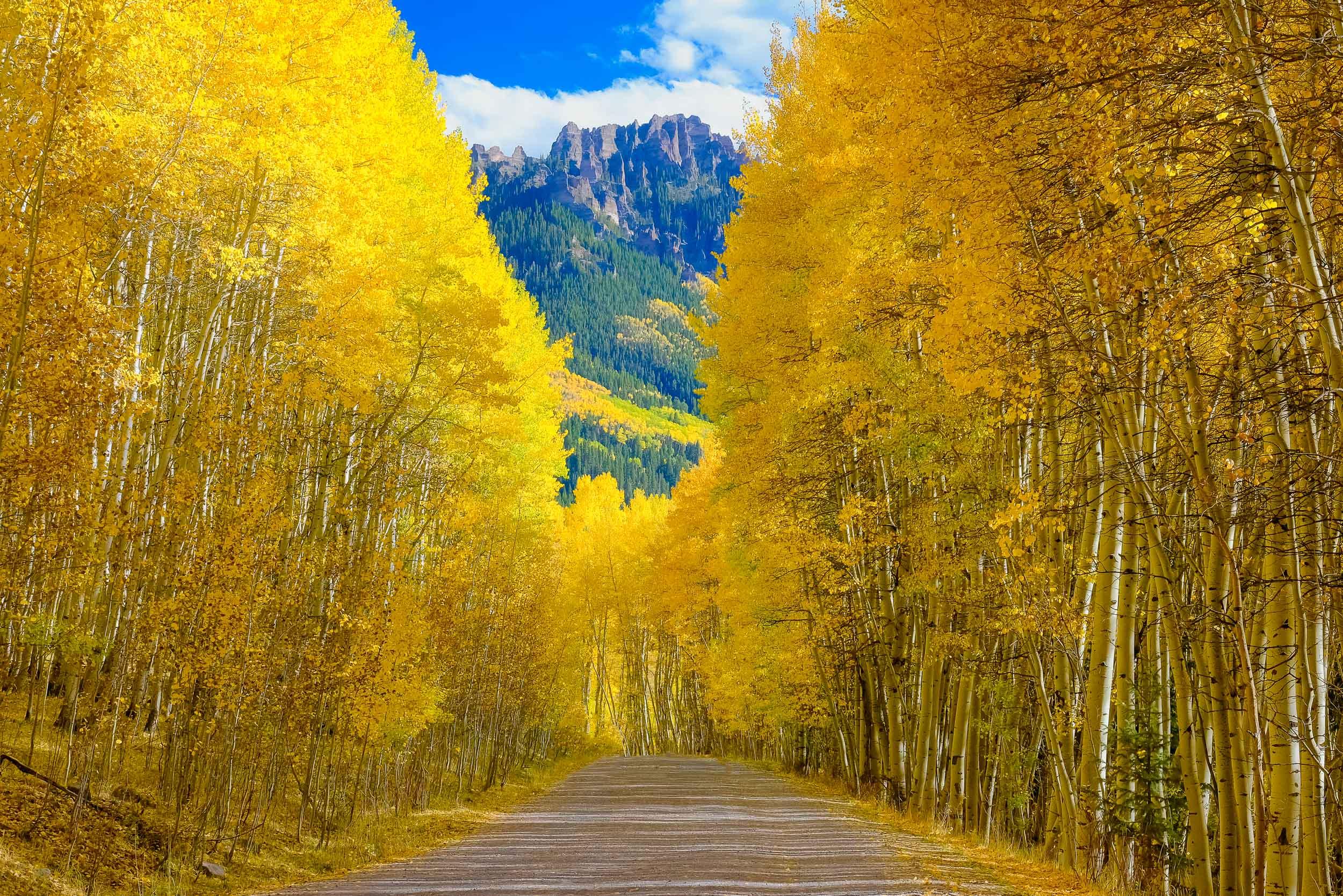 Owl Creek Pass along the Cimmaron Mountain Range during the fall season - Fuji X-T2, XF 50-140mm f/2.8 @ 50mm