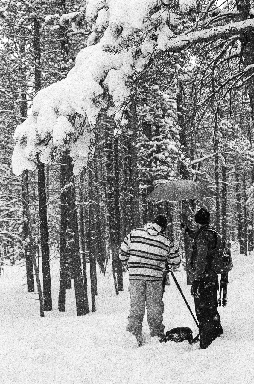 Using a snow covered branch to frame Ryan and Chase as Ryan sets up for a picture