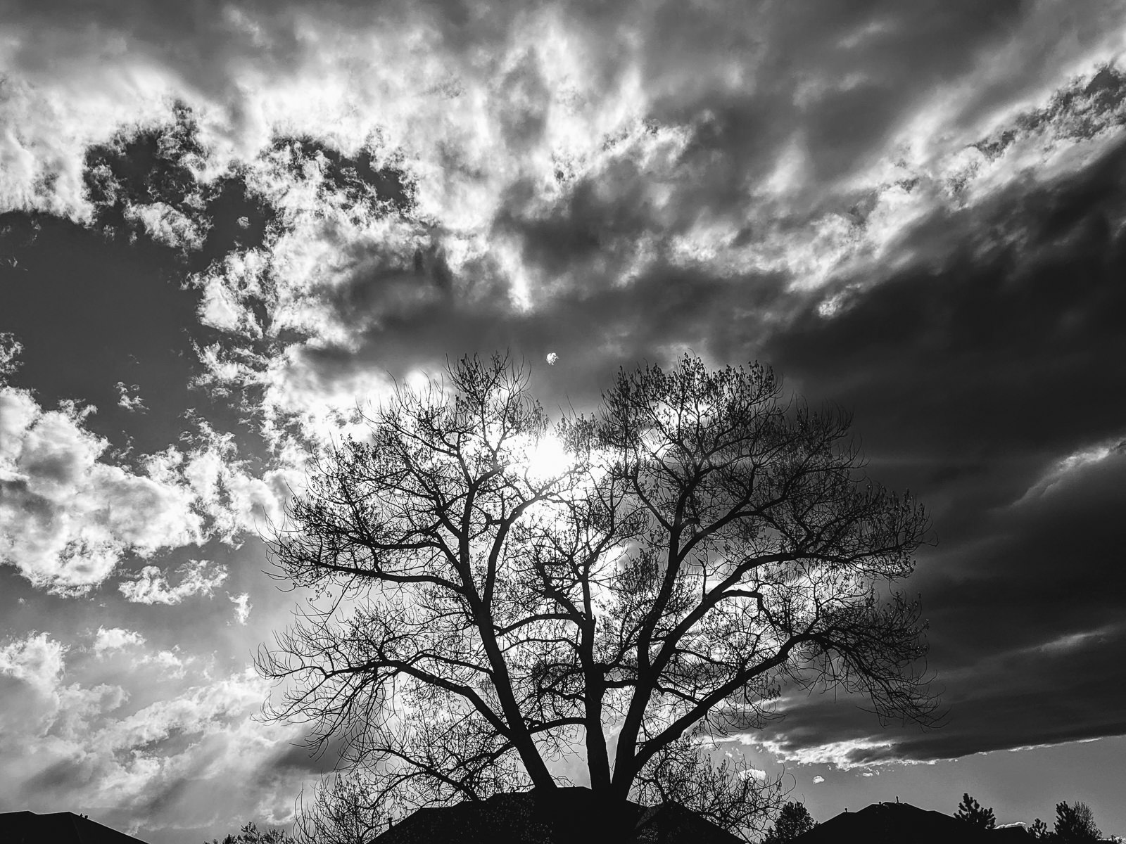 Day 147- 365 Day B&W Photo Challenge - Afternoon clouds at sunset -  Google Pixel 3, VSCO KX4 Film Simulation