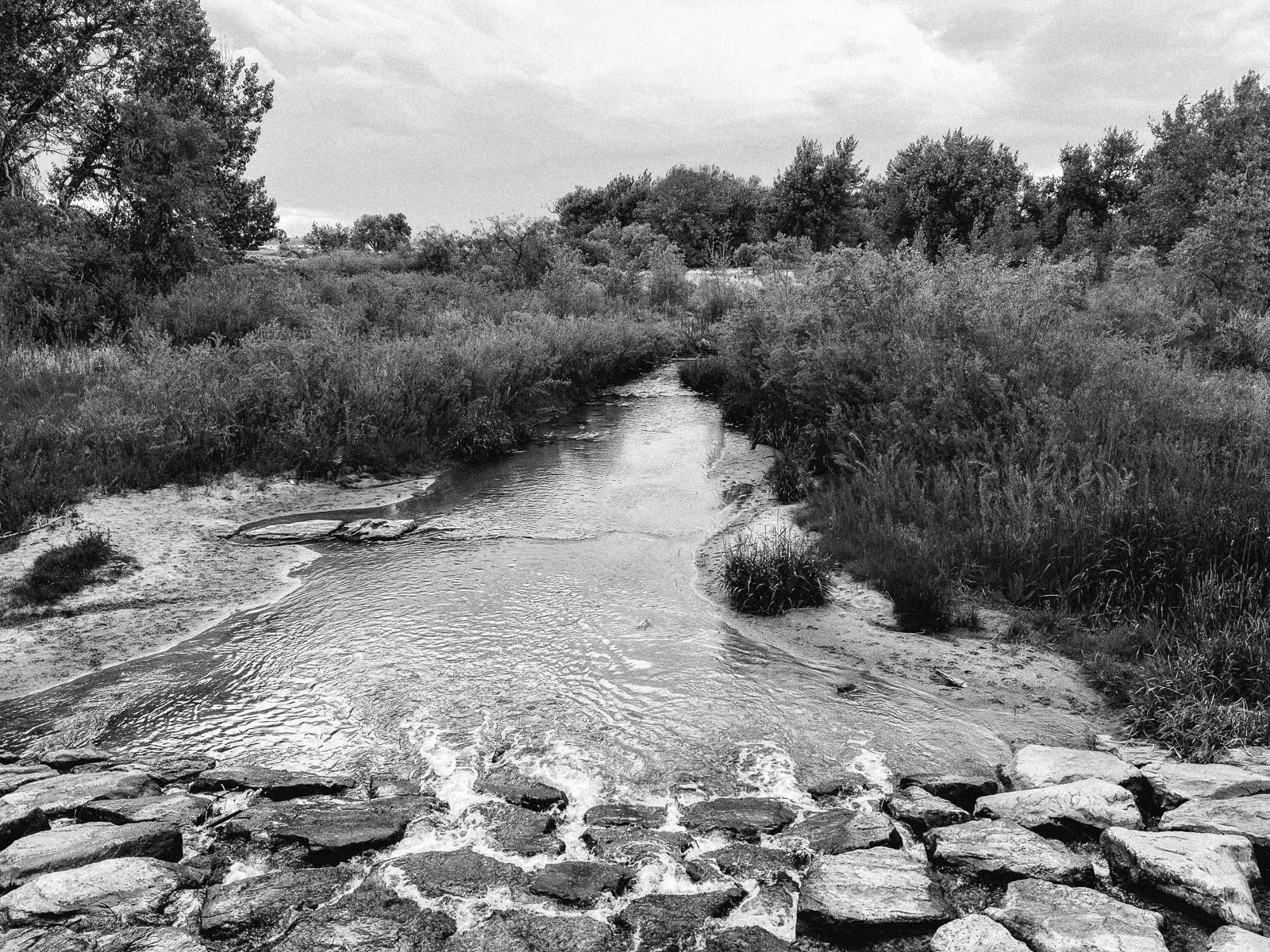 Day 160- 365 Day B&W Photo Challenge - The spring rain and heavy snowfall this winter have filled the creeks with spring runoff. - Google Pixel 3, VSCO Kodak Tri-X400 Film Simulation