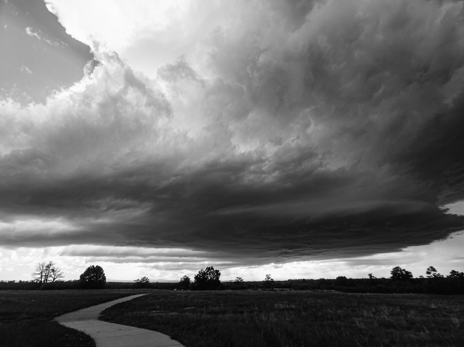 Day 162- 365 Day B&W Photo Challenge - Shelf Cloud covers eastern Denver as it moves on to the Eastern Plains of Colorado. - Google Pixel 3, Moment Wide Lens, VSCO Fujifilm Neopan 400 Simulation