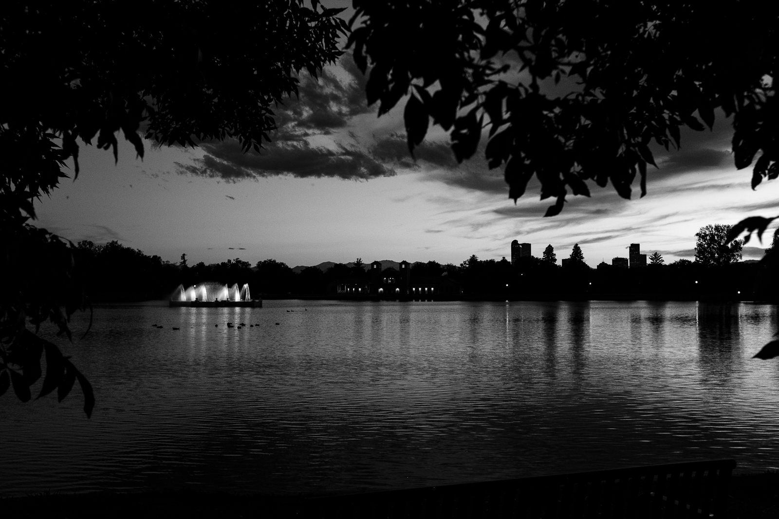 Day 163- 365 Day B&W Photo Challenge - Sunset at City Park in Denver, Colorado. - Fuji X100F, Acros Film Simulation