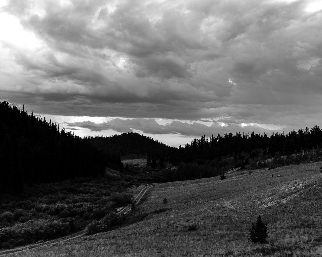 Day 200 - 365 Day B&W Photo Challenge - Trail into the wilderness - Fuji X-T3, XF 23mm f/2, Acros R Film Simulation